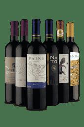 Kit 6 Tintos Incríveis (6 Vinhos)