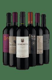 Kit Carménère (6 Vinhos)