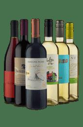 Kit Chileno 3 tintos e 3 Brancos (6 Vinhos)