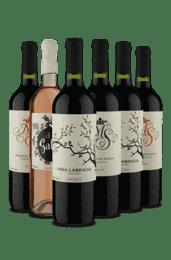 Kit Espanhol Seco (6 Vinhos)