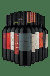 Kit Vinho Fácil Novo Site (10 Vinhos)