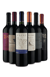 Kit 6 Tintos Chilenos (6 Vinhos)