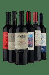 Kit Melhor do Cabernet Sauvignon (6 Vinhos)