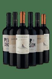 Kit Melhor do Malbec (6 Vinhos)