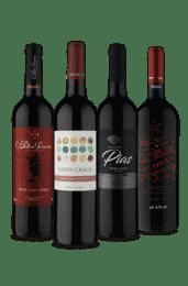 Kit Relâmpago Tintos para Brindar (4 Vinhos)