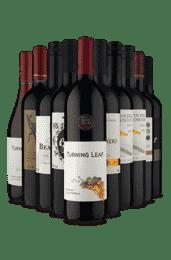 Kit Tintos para Apreciar (10 Vinhos)