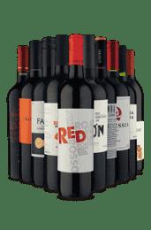 Kit Especial Tintos (10 Vinhos)