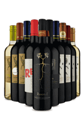 Kit Seleção Vinho Fácil (10 Vinhos)