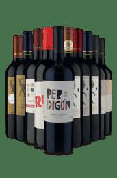Kit Melhores Tintos (10 Vinhos)