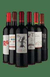 Kit Tintos Saborosos (6 Vinhos)