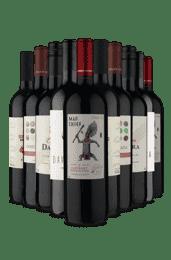 Kit Tintos Mais Desejados (10 Vinhos)