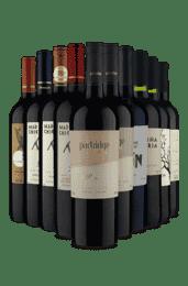 Kit Seleção 10 Sabores (10 Vinhos)