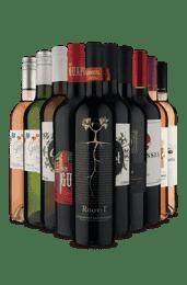 Kit O Que Tem de Melhor (10 Vinhos)