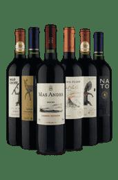 Kit 6 vinhos Chilenos Selecionados (6 Vinhos)