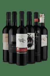 Kit Harmonize com Pães (6 vinhos)
