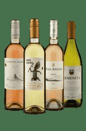 Kit Chilenos Refrescantes (4 Vinhos)