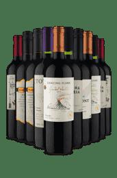 Kit Tintos Marcantes (10 Vinhos)