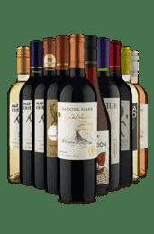 Kit Relâmpago Renomados do Chile (10 vinhos)