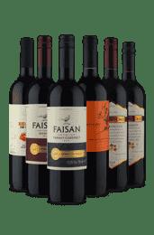 Kit Os Melhores do Vinho Fácil (6 Vinhos)