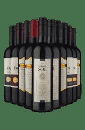 Kit Especial Tintos Espanha x Uruguai (10 Vinhos)