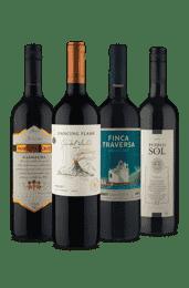 Kit Sabores Tintos (4 Vinhos)