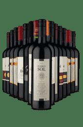 Kit Especial Janeiro (15 Vinhos)