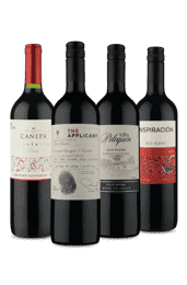 Kit Meio Seco Chile (4 Vinhos)