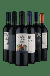 Kit Tintos do Chile (6 Vinhos)