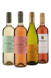 Kit Refrescantes do Chile (4 Vinhos)