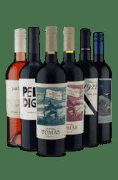 Kit Malbec Misturado (6 Vinhos)