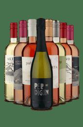 Kit América do Sul para Beber Gelado (8 Vinhos)
