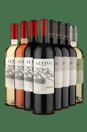 Kit 2 Familias Argentinas de Secos (8 Vinhos)