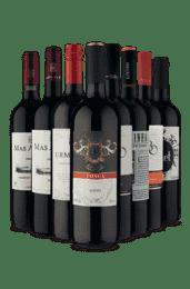 Kit Vinhos Tintos Secos e Meio Secos (8 Vinhos)