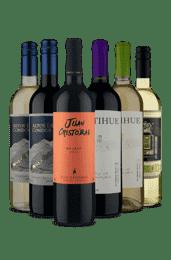Kit Vinhos Secos - Brancos e Tintos (6 Vinhos)