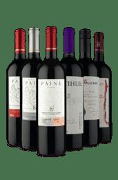 Kit Tintos Chilenos Secos e Meio Secos (6 Vinhos)