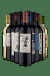 Kit Maravilhas Sul-Americanas (10 Vinhos)