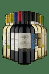 Kit Misturas Surpreendentes (10 vinhos)