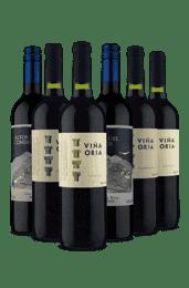 Kit 6 Tintos Curtindo Altos e Viña Oria (6 Vinhos)