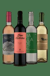 Kit 4 Variedade Total Sul-Americana (4 Vinhos)