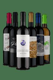 Kit 6 Portugueses e Argentinos (6 Vinhos)