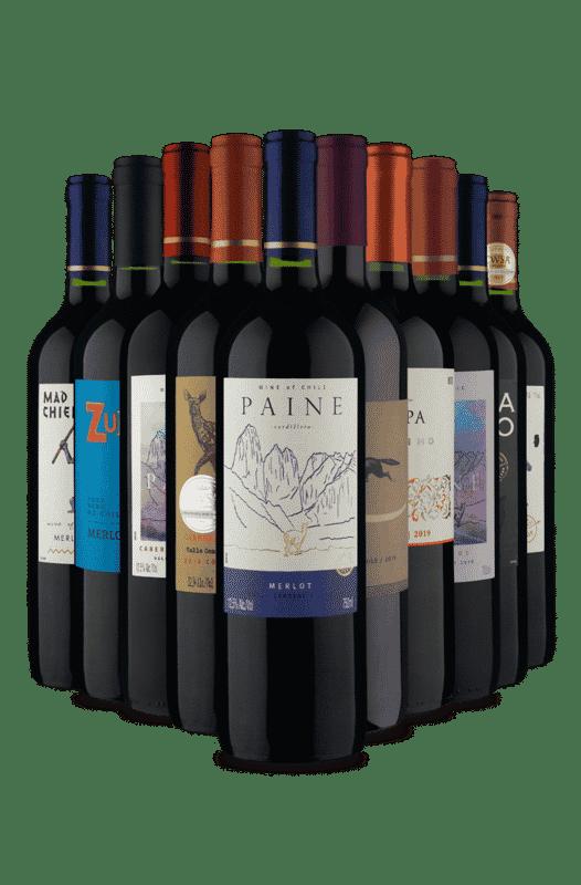 Kit Tintos Chilenos mais pedidos (10 Vinhos)