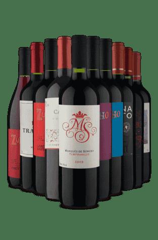 Kit Tintos 9 Chilenos e 1 Espanhol (10 Vinhos)