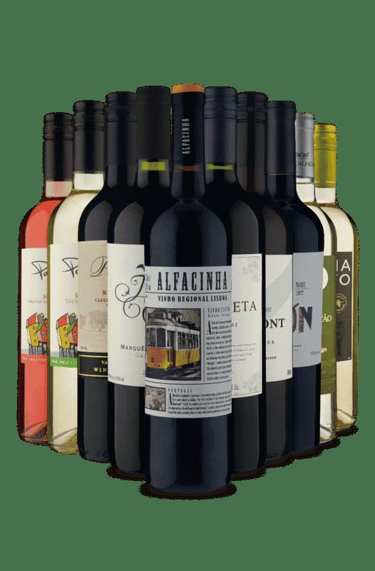 Kit Seleção Vinhos Premium (10 Vinhos)
