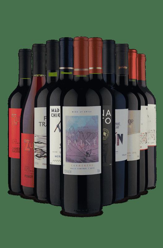 Kit Tintos América do Sul (10 Vinhos)