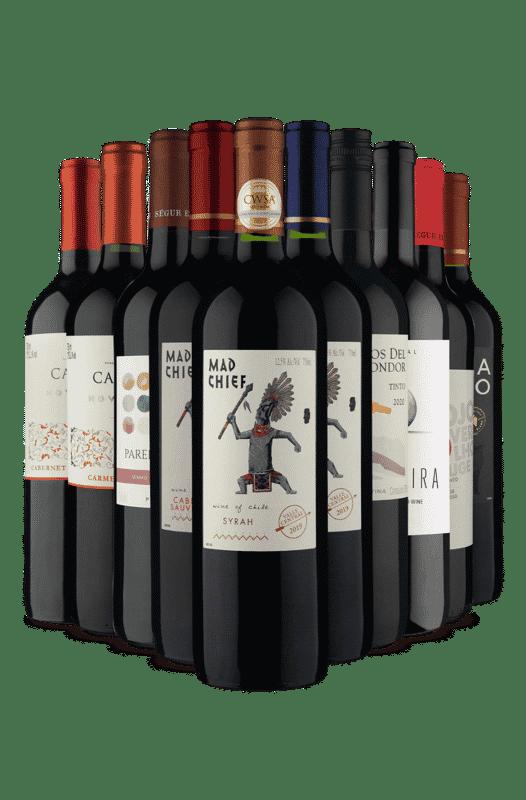Kit Tintos Vinho Fácil(10 Vinhos)