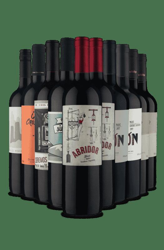 Kit Tintos Argentinos (10 Vinhos)