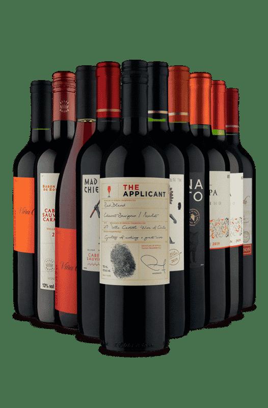 Kit Tintos Chilenos (10 Vinhos)