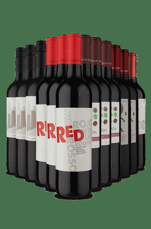 Kit Diferentes Tintos (12 Vinhos)