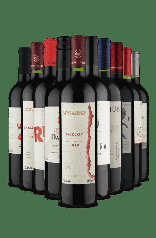 Kit Tintos para Festejar (10 Vinhos)
