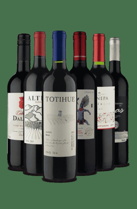 Kit Vinhos Secos Fantásticos (6 Vinhos)